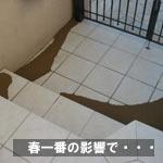 haruitiban_080225_1.jpg
