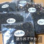 yumeya0412.jpg