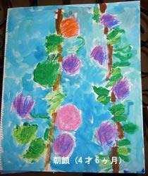 sara_110228_asagao.jpg