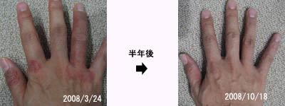 shufusissin20100901_1.jpg